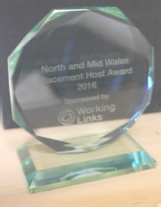 Gwobr Working Links Award 2